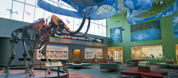 museum-natural-history