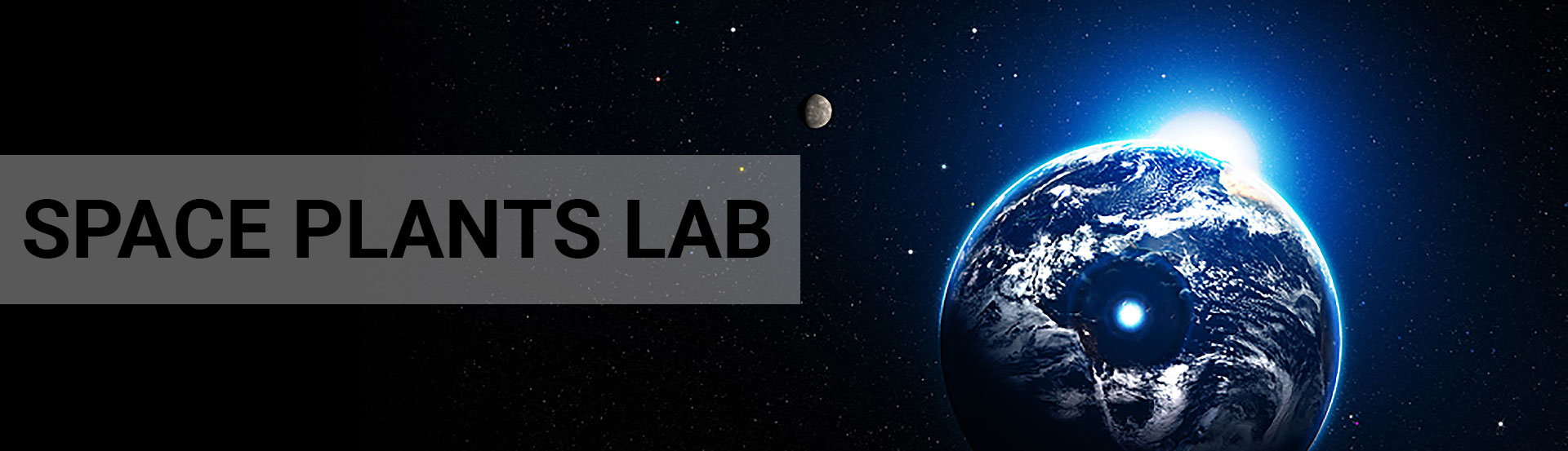 UF                   Space Plants Lab